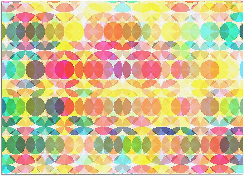 KESS InHouse FF1012ADM02 Fimbis SercuelarToo Geometric Circles Dog Place Mat, 24  x 15
