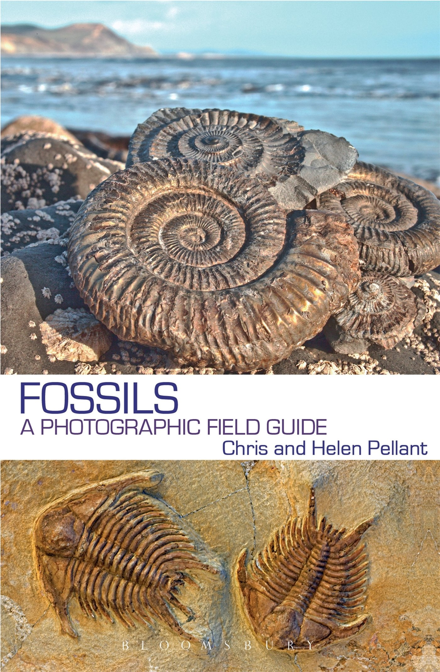 Image OfFossils: A Photographic Field Guide