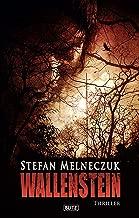 Wallenstein: Mystery-Thriller aus dem Ruhrgebiet (Thriller, Krimi und Mystery 12) (German Edition)