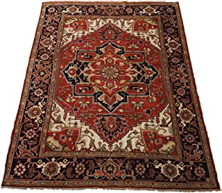 9X12 Veg' Dye Serapi Antiqued Hand-Knotted Wool Area Rug Oriental Carpet (9.1 x 11.11) (ET)