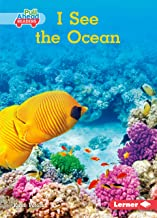 Best the pull of the ocean Reviews