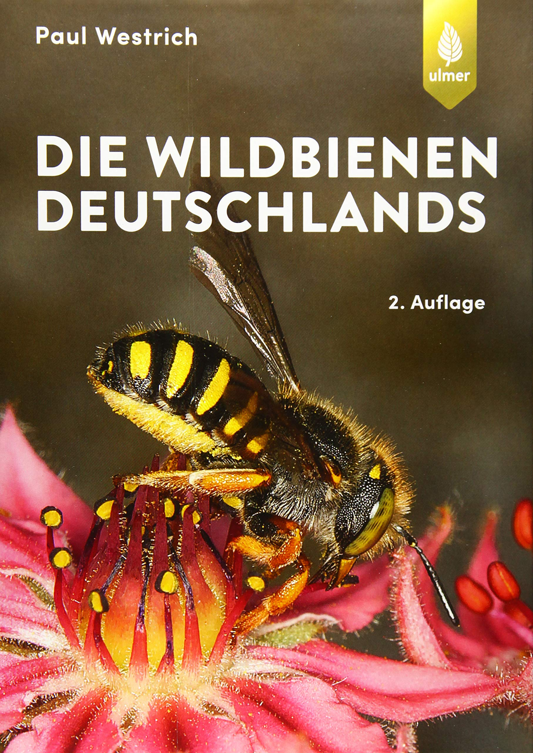 Image OfDie Wildbienen Deutschlands