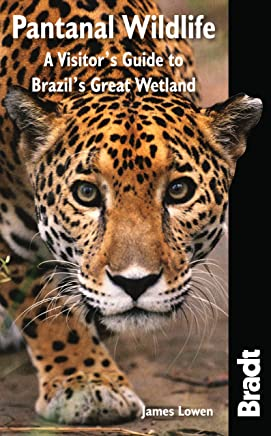 Pantanal Wildlife: A Visitor's Guide to Brazil's Great Wetland