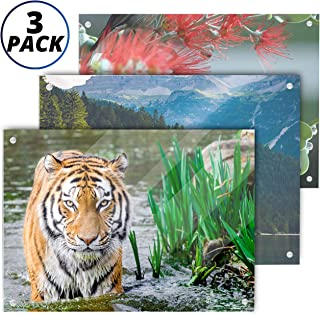 Best 3 8 thick acrylic Reviews