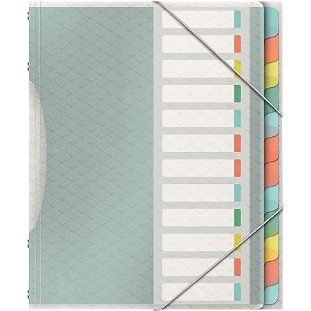 Esselte 626256 Colour'Ice Esselte Trieur A4 capacité 200 feuilles index Interchangeable avec 12 Onglets double fermeture élastique couverture en PP Transparent Couleurs Assorties