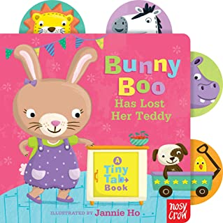 Bunny Boo Has Lost Her Teddy: A Tiny Tab Book