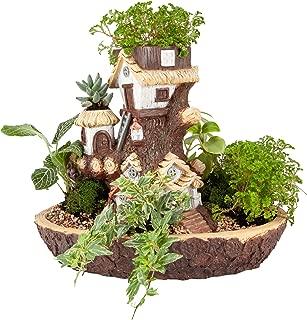 Best forest garden planters Reviews