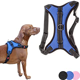 Zenify Pets Dog Harness - Chest Control Grab Adjustable Reflective for Puppy Small Dogs (Blue, Small)