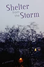 Shelter from the Storm: An Anthology (English Edition)