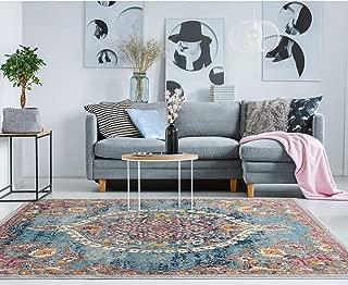 Best 8x10 rugs under 100 dollars Reviews