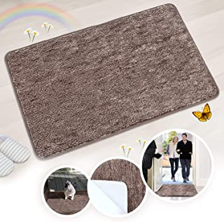 Indoor Doormat Front Door Mat Non Slip Rubber Back Door Mats Magic Inside Dirt Trapper Entry Rugs Entrance Door Rug Machine Washable Door Carpet Mat for Entryway - Coffee, 20