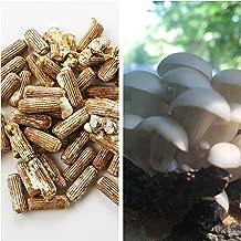 Grey Dove Spawn and Wax Combo - Grey Dove Mushrooms Mushroom Mycelium Plug Spawn - 100 Count Plugs - 3oz Wax Grow Edible Gourmet & Medicinal Oyster Fungi On Trees & Logs