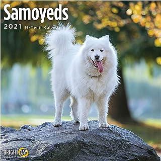 2021 Samoyeds Wall Calendar by Bright Day, 12 x 12 Inch, Cute Dog Puppy