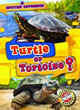 Turtle or Tortoise? (Spotting Differences: Blastoff! Readers, Level 1) (Blastoff! Readers, Level 1: Spotting Differences)