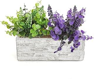 Gray Cement Rectangular Succulent Plant Flower Pot/Decorative Kitchen Herb Garden Planter Container