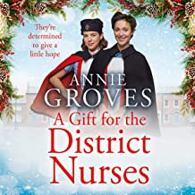 A Gift for the District Nurses: The District Nurses, Book 4