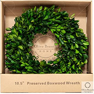 Olive Branch Home Preserved Boxwood Wreath With Gift Box, Small Indoor Year Round Green Wreath (10.5 Inch Round)