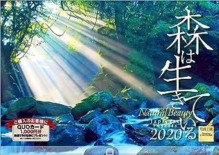 森は生きている 2020年 カレンダー 壁掛け SF-2 (使用サイズ594x420mm) 風景