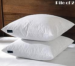 Best 24 inch down pillow insert Reviews