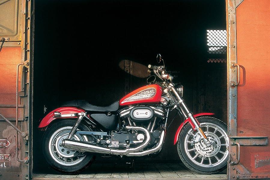郡かすれた起きろBrewster Round the World 259-67114 Pre-pasted Wall Mural Harley RR Bike, 72-Inch High by 108-Inch Width by Brewster