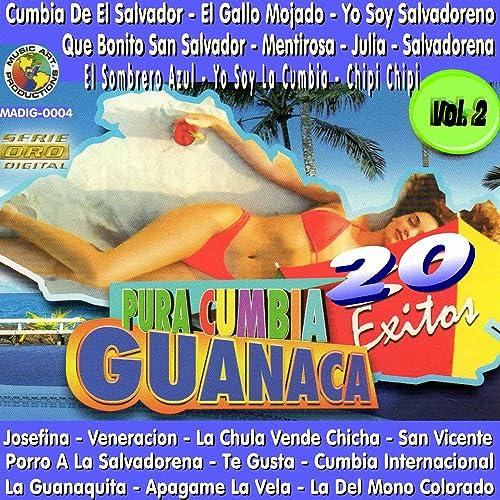 Pura Cumbia Guanaca, Vol. 2