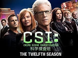 CSI:科学捜査班 シーズン 12 (吹替版)