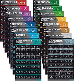 [16-PACK] Laminated Large Workout Poster Set - Perfect Workout Posters For Home Gym - Exercise Charts Incl. Dumbbell, Yoga...