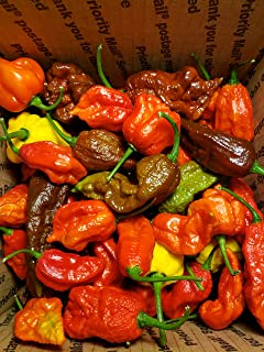 Fresh Super Hot Peppers - Mixed Box: Carolina Reapers, Ghost, Scorpion, ETC.