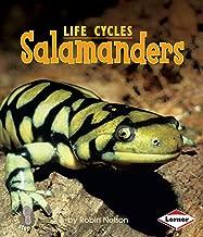 Salamanders (First Step Nonfiction ― Animal Life Cycles)