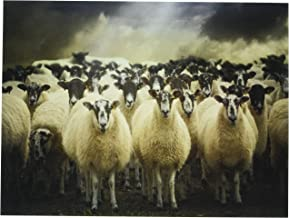 Wee Blue Coo Sheep Flock Farm Animal Unframed Wall Art Print Poster Home Decor Premium