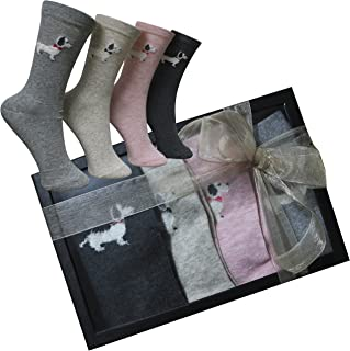 c111334d0 FERETI Calcetines Mujer Caja Regalo Perro Salchicha Teckel San Valentin  Ideas Box Moda Chica Regalitos Día