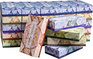 Silky Soft T100VAP 2-Ply Facial Tissues in a Box, White, 100 Count (Pack of 30)