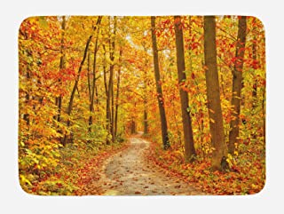 Ambesonne Fall Bath Mat, Deciduous Trees with Seasonal Leaves Pathway Wilderness Woodland Image, Plush Bathroom Decor Mat with Non Slip Backing, 29.5