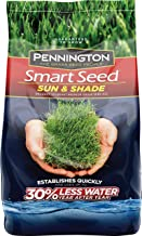 Pennington 100526673 Smart Seed Sun and Shade Grass Seed, 20 LBS