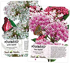 Swamp Milkweed Seed Packet Duo (Asclepias incarnata) Open Pollinated Seeds by Seed Needs