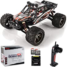 BEZGAR 8 Hobbyist Grade 1:12 Scale Remote Control Truck, 2WD High Speed 42 Km/h All Terrains Electric Toy Off Road RC Mons...