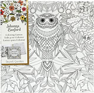 Best Art Alternatives Johanna Basford Secret Garden Coloring Canvas-Owl Review