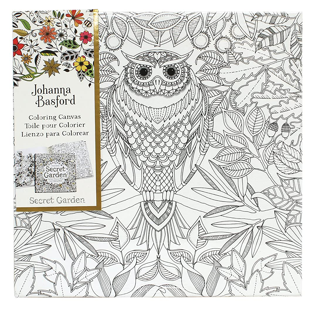 Art Alternatives Johanna Basford Secret Garden Coloring Canvas - Owl,