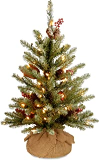 National Tree 2 Foot Dunhill Fir Tree with Cones, Red Berries, Snow and 15 Warm White Battery Operated LED Lights with Timer (DUF-300-20-B1)