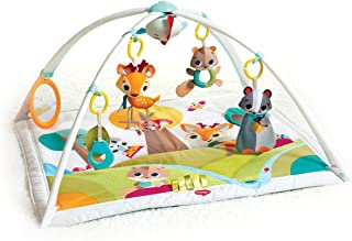 Best baby gift playmat Reviews