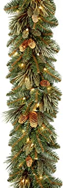 National Tree 9 Foot by 10 Inch Carolina Pine Garland with 27 Flocked Cones and 100 Clear Lights (CAP3-306-9A-1)