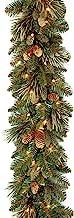 National Tree Carolina Guirnalda de Pino de 9 pies por 10
