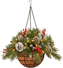 National Tree Company Pre-lit Artificial Christmas Hanging Basket | Flocked with Mixed Decorations and LED Lights | Froste...