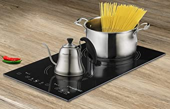 induction stove double burner price