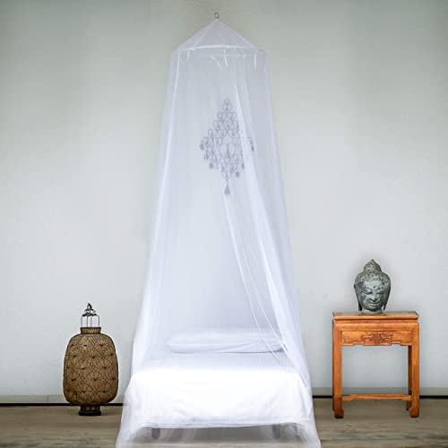 the mosquito net 2010 full movie online
