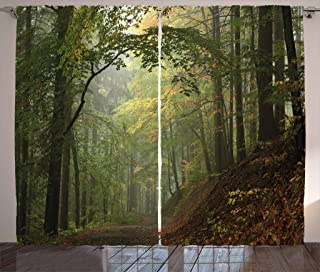 Ambesonne Forest Curtains, Misty Autumn Forest with Shaded Trees Foggy Dreamy Woodland Scene, Living Room Bedroom Window Drapes 2 Panel Set, 108 W X 84 L Inches, Olive and Reseda Green Brown
