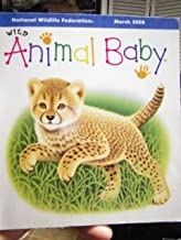 National Wildlife Federation March 2008 Wild Animal Baby (March 2008 Glossy Cardstock Printing, Baby Cheetah)