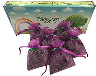 Zziggysgal 6 French Lavender Sachets in a Beautiful Keepsake Box (Purple)