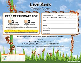 Coupon to Redeem for 2 Tubes of Live Ant Farm Ants: Ant Farm Kit Refill. Use for Gift-Giving if Too hot/Cold in recipients Area, They can redeem When The Temperature is Good.