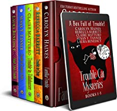 A Box Full of Trouble: 5 Black Cat Detective Novels from the Trouble Cat Mysteries series